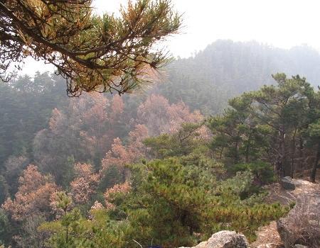 临朐嵩山风景区,临朐嵩山风景区旅游攻略,临朐嵩山风景区旅游景点